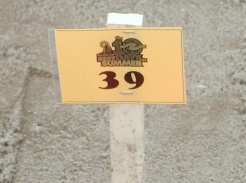 Picture of number 39 sign